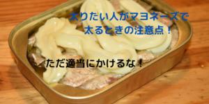 【太りたい】マヨネーズは太れるけど注意点が多いよ?ただ使うのはダメ